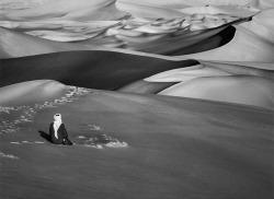 howtoseewithoutacamera:  by Sebastião Salgado Sahara, Algeria. From the series Genesis.