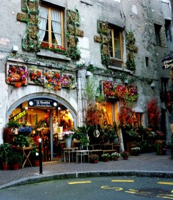 bluepueblo:  Flower Shop, Annecy, France photo via lara