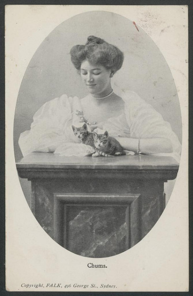 oldtimeycats:  Woman and cats, 1906 by Powerhouse Museum Collection on Flickr.