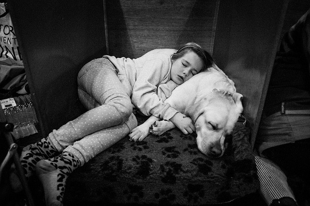 SLEEP on Flickr.Crufts 2013
