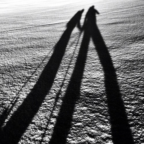 #shadows in the #snow … #bw