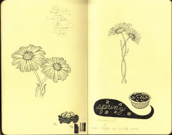 fuckyeahmoleskines:  Daisies for my friend's tattoo! sketchesbymonique.tumblr.com monique-aimee-art.tumblr.com