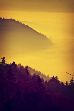 "hitrecord:  ""Misty Mountains"" Photo by Huckbros"