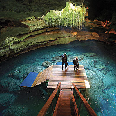 oldflorida:  Devils Den Springs is a scuba diving resort in Williston, Florida