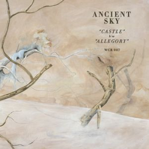 "SS: ANCIENT SKY follow up their T.R.I.P.S. LP from 2012 with this smoking 7"" on Wharf Cat Records in New York - includes 2 new cuts of their brooding psych-folk you won't want to miss » http://styrofoamdrone.com/2013/01/29/ancient-sky-castle-7/"
