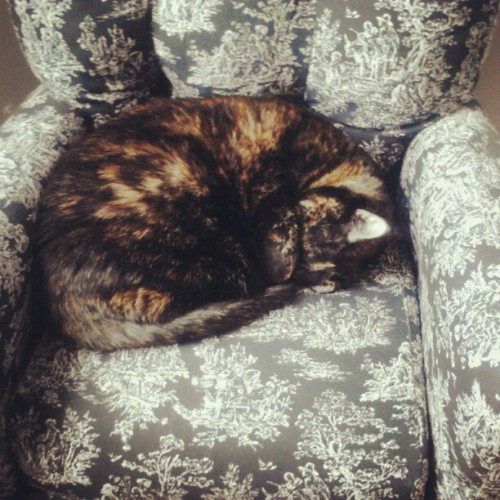 Rue's chair <3