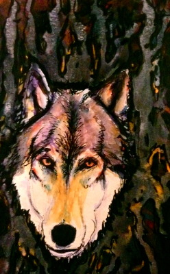Wolf. Watercolor, India Ink
