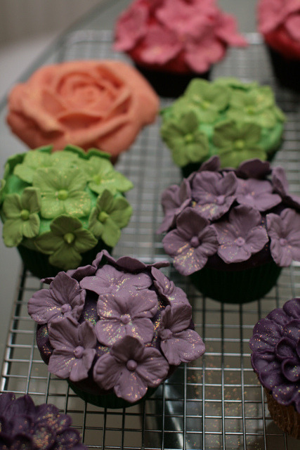 awkwardcupcake:  Hydrangea Cupcakes by Starbird Bakehouse on Flickr.
