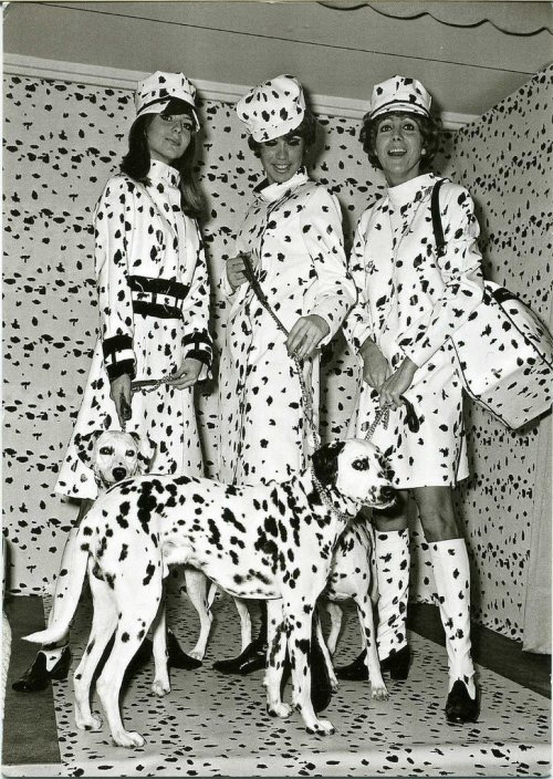 vintagemarlene:  dalmation fashion, 1967 (www.retronaut.com)