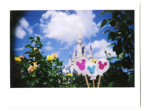 disneyparksphotoproject:    Mouse Pride  photographer: Chloe Rice  location: Walt Disney World