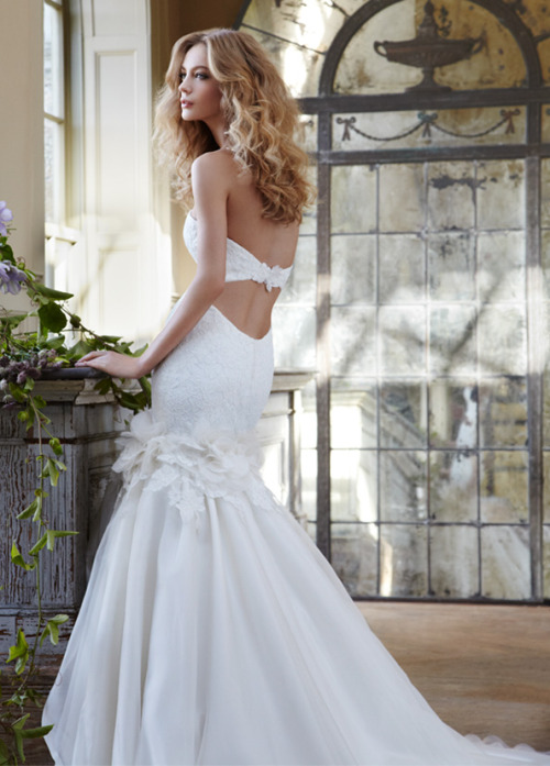 helloweddingdiary:  Hayley Paige Spring 2012 bridal collection