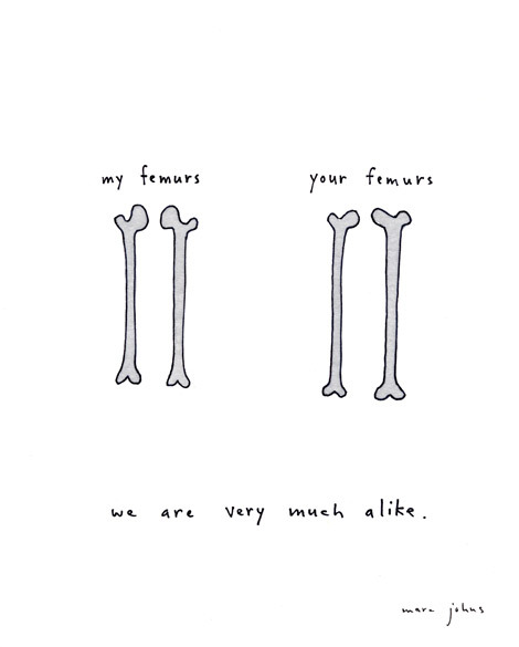 1000drawings:  by Marc Johns