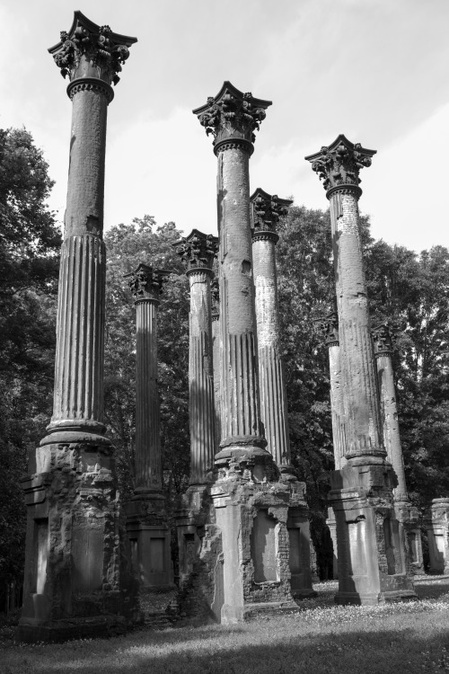 THE RUINS OF WINDSOR - NEAR PORT GIBSON, MISSISSIPPI  The amazing RUINS OF WINDSOR loom up at 10.3 m. (L). Twenty-two gigantic stone Corinthian columns remain as testimony to what was perhaps the supreme gesture of the grand manner of ante-bellum Greek Revival architecture. These columns, joined by Italian wrought-iron railings which were once at the upper gallery level, form a perfect outline of the house, which was rectangular in shape with a narrow ell, the service wing, at the rear. Windsor was built by S. C. Daniel, a wealthy planter who had holdings in the vicinity and across the river in Louisiana. When completed in 1861, it was considered the handsomest home in Mississippi. It had five stories topped by an observatory. The furnishings were imported and the library housed rare old books. Rich tapestries and velvet draperies adorned it. During the War between the States for a short period the Confederates used its lofty tower, which commanded a view of the Mississippi River, as an observation point; then the Federals used it as a hospital. Mark Twain, when a pilot on Mississippi steamboats, used to chart his course at this point by the peak of the tower. In 1890 Windsor was destroyed by fire. Except for a few pieces of jewelry nothing was saved. — Mississippi, A Guide to the Magnolia State (WPA, 1938)  Guide Note: The site was donated to the state of Mississippi in 1974. * * *   David Jones is a State Guide to Mississippi, where he's a Professor/Extension Specialist. While going to school, he lived in five of the Southern states, from Virginia to Texas. His career path has landed him in some pretty remote places, but has also allowed him to meet some amazing people and see some astonishing things. Currently he can be found traveling the highways and back roads of Mississippi, helping people out when he can and exploring the hidden treasures of the state. You can find him on tumblr at woodprof.tumblr.com.