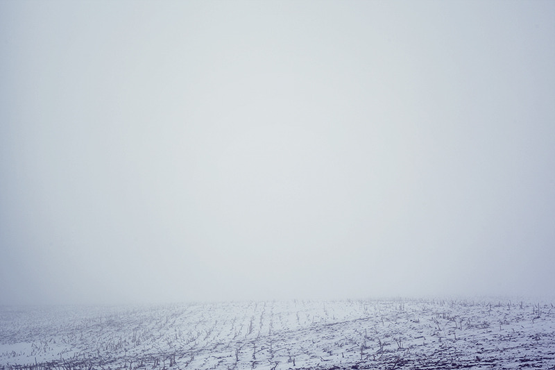 lazywater:  Total fog whiteout - 28/365