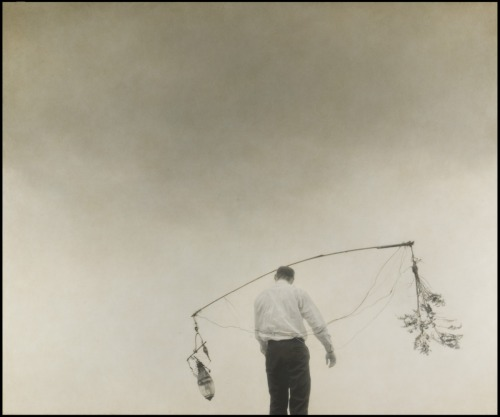 "cinoh:  ""Architect's Brother"" by Robert and Shana Parke Harrison"
