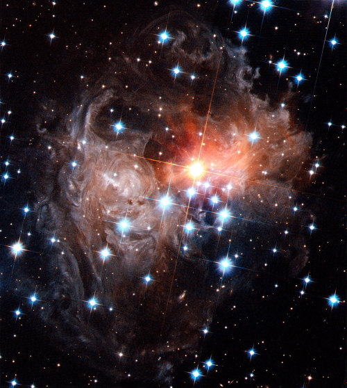 spaceplasma:  Spectacular views of V838 Monocerotis light echo These images show the evolution of the light echo around the star V838 in the constellation of Monoceros. They were taken by the Hubble Advanced Camera for Surveys in November 2005 (above) and again in September 2006 (below). The numerous whorls and eddies in the interstellar dust are particularly noticeable. Possibly they have been produced by the effects of magnetic fields in the space between the stars. Source: Spacetelescope.org