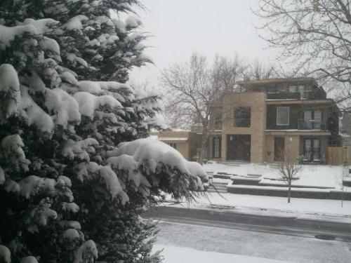 Happy #Denver spring! http://bit.ly/ZfmTwn