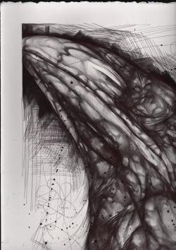 Illustration art raven bic artists on tumblr ballpoint