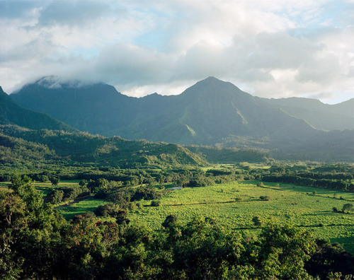macaroononastick:  HANALEI VALLEY AND MT. NAMOLAKAMA. by k.kunstadt on Flickr.