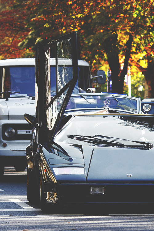forever-and-alwayss:  countach ! <33