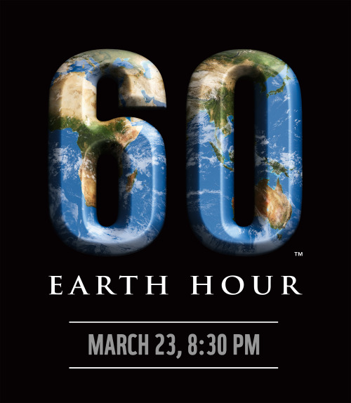 Earth Hour is being held on March 23, 2013, from 8:30 to 9:30 pm! You can join the millions of other people participating across the globe by turning off all non-essential lights, appliances and other electrical devices in your household during this time period in your timezone. Earth hour has an impact beyond the measurable decrease in electricity consumption (up to 10% lower, as measured in Sydney, Australia in 2007 (x)).  It raises awareness of environmental issues such as climate change and energy consumption, and it encourages individuals, businesses and governments to take responsibility for their ecological footprint, opening dialog regarding environmental challenges. Read more at the Earth Hour website.