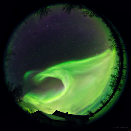 ikenbot:    Aurora Tsunami Photographed by a full circle fisheye lens, the northern lights dominate the sky above this small Sami village in Lapland, northern Sweden. Sami people in Lapland traditionally believed that the northern lights were the energies of the souls of the departed. Some Eskimos described aurora as the dancing spirits. Some Indians in the North America described it as a fire in the far north, a reminder from the creator of the Earth. — Babak Tafreshi  Note: Auroras are formed when solar activity from the sun clashes with the Earth's electromagnetic field creating the curtains of light we see in the sky.