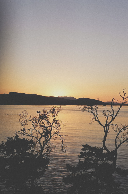 man-and-camera:  Dusk on Pender Island ➾ Luke Gram
