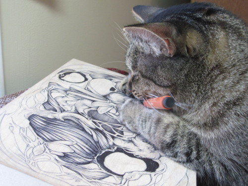 christinamakes:  My cat can draw too. www.christinamrozik.com www.facebook.com/christinamrozik