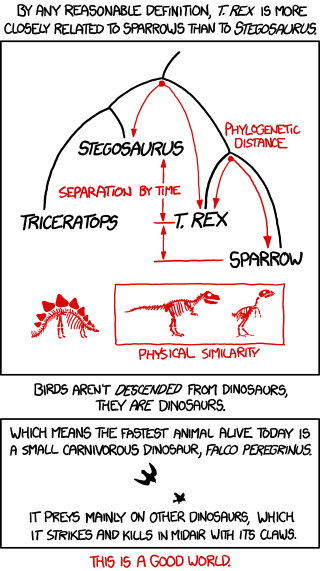 (via xkcd: Birds and Dinosaurs)