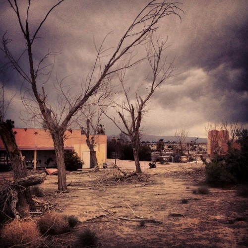 Abandoned waterpark #newberrysprings #route66 #summer #desert #trees #sky #instamood #picdaily #stormclouds #storm