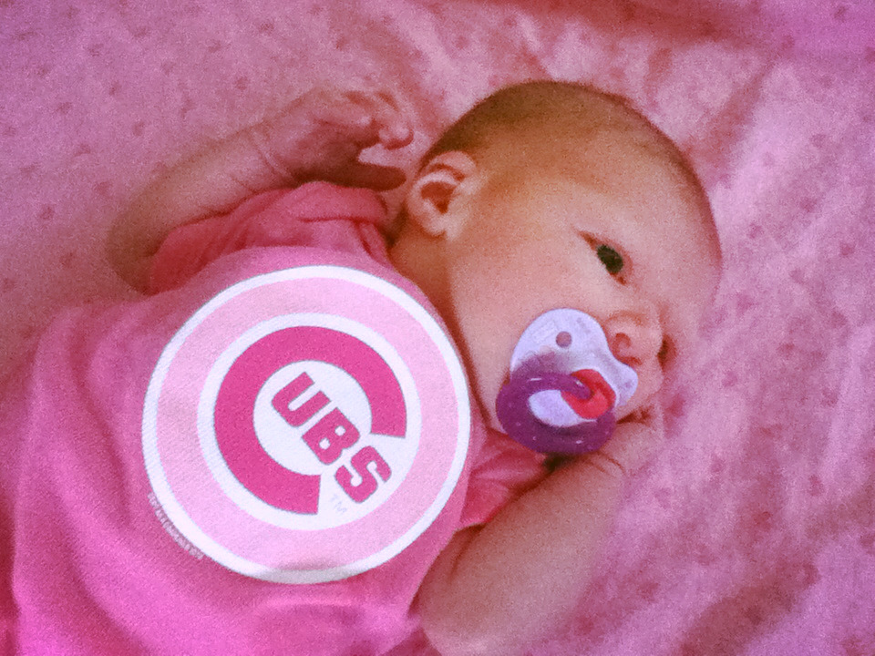 Our lil Cubs fan.