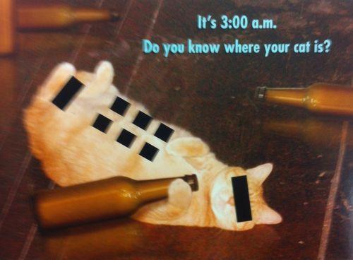 Catlady Files