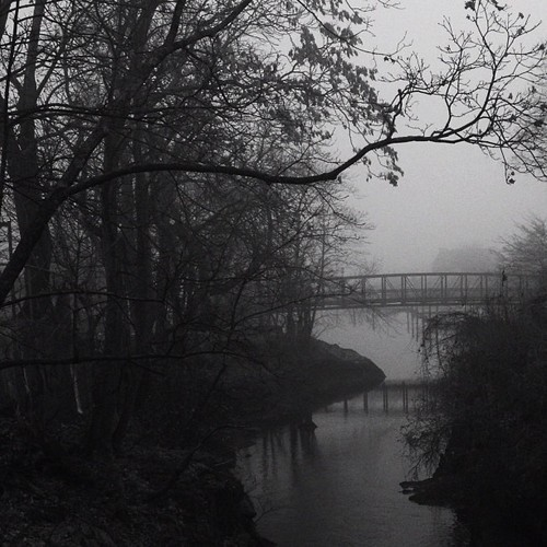 A new path. #foggy #bridge #footbridge #noir #blackandwhite #moody #b&w #harbor #shootermag #evocative #river #baretrees #milford #ct #mabp