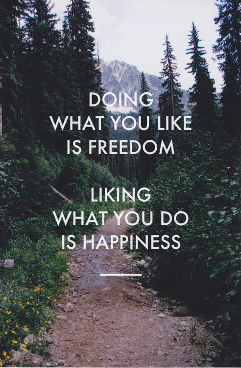 Doing what you like is freedom.