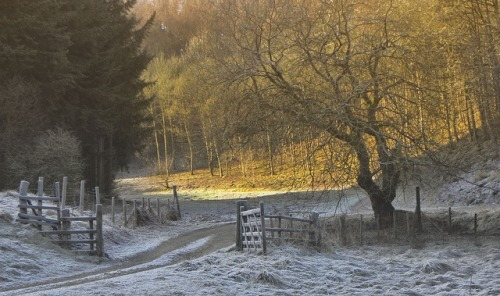 Frosty day by jimsumo999 http://flic.kr/p/dCxi9k  Ryedale. North Yorkshire