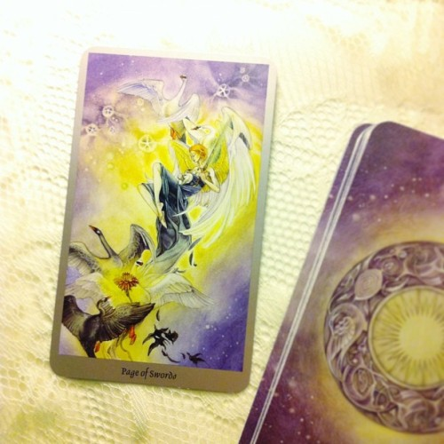 selfstyled:  #Tarot365 [ 093/365 ] : Page of Swords; a reminder to embrace difficult situations as they're lessons in disguise #tarot #dailytarot #shadowscapes #bewitchery