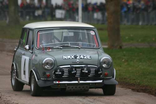Watching everyone Starring: '67 Morris Mini Cooper S (by Stu.G)