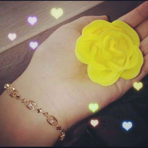Tada! Yellow rose