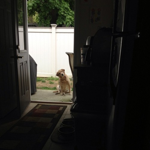 aaaaaare you gonna come outside or what?