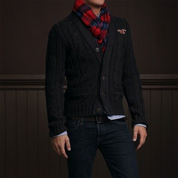 Usually I despise hollister and abercrombie, but I really like this look. (minus the giant bird)