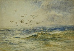 yama-bato:  Jessie Traill Seascape with Gulls   Watercolour, 18 x 26.5 cm