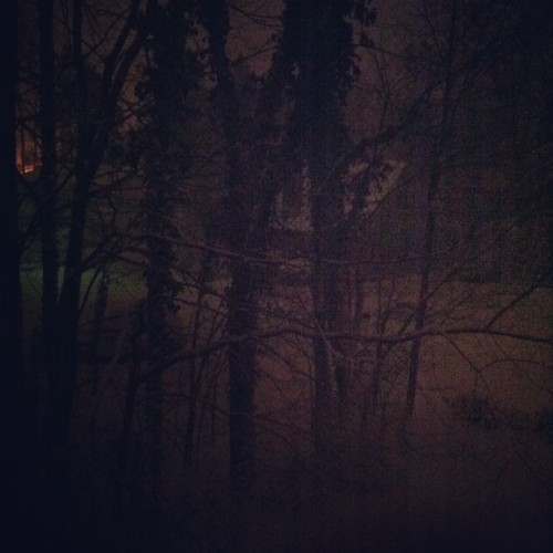 So much #snow and nowhere to go :( so bored. #tonight #storm #trees #frommywindow