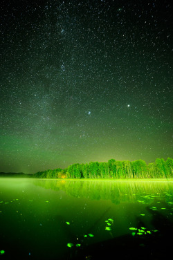 senerii:  Night sky by Karhtur on Flickr.