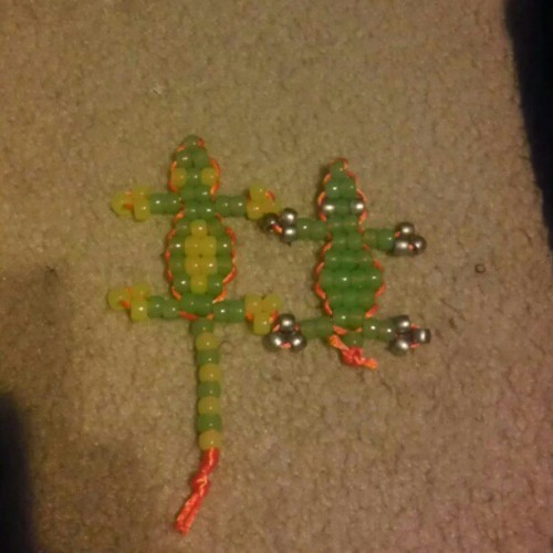 Now I have 2 lizards :-)