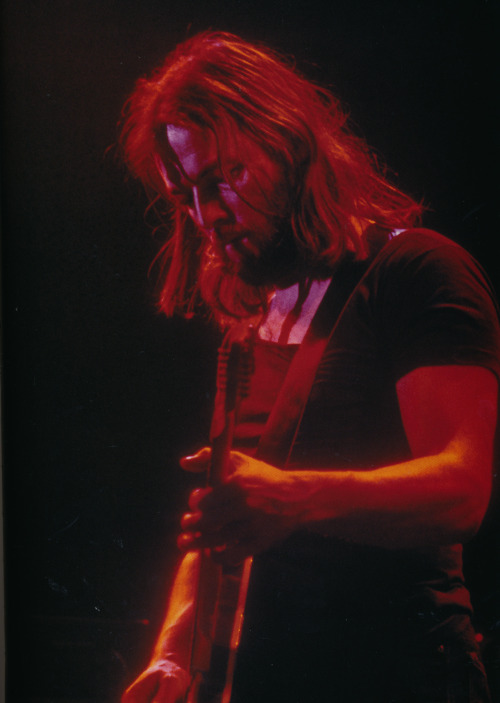 pinkfloyded:  David Gilmour circa Animals period