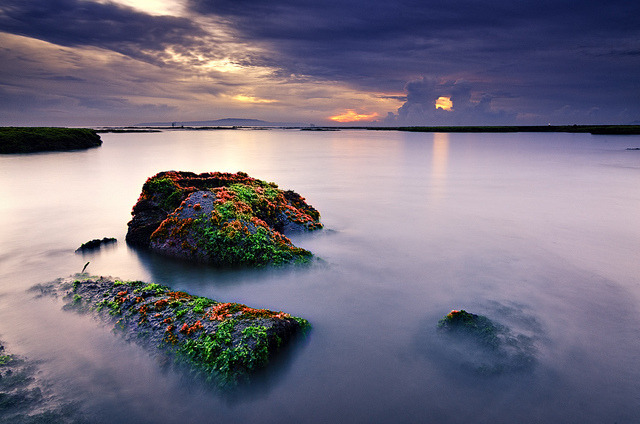 Mossy Rocks by eggysayoga on Flickr.