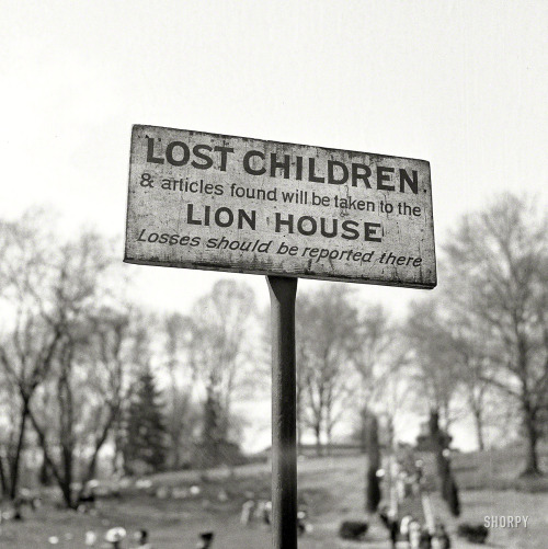 nevver:  Lost Children