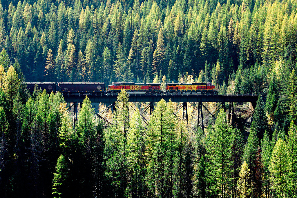 definitelydope:  Train Coming Through (by Todd Klassy)