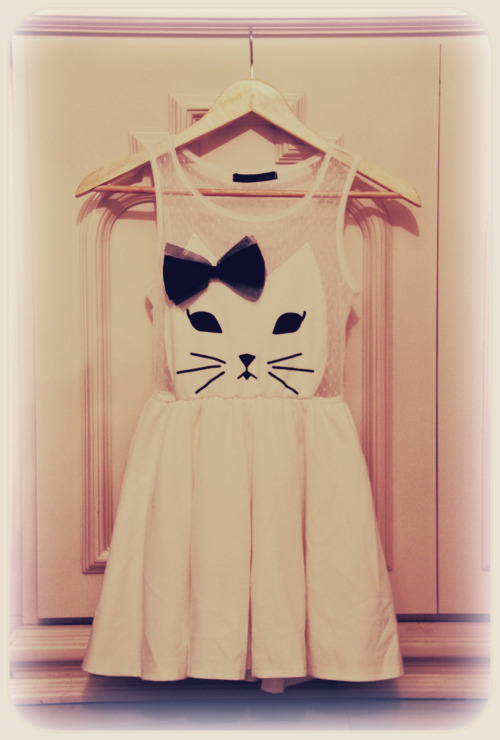 I still want a cat dress.