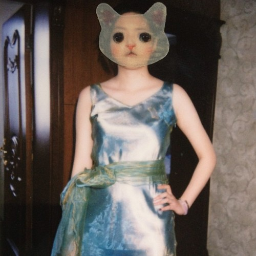 #fujifilm #cat #neck #vintage#dress 2✨💚🐱